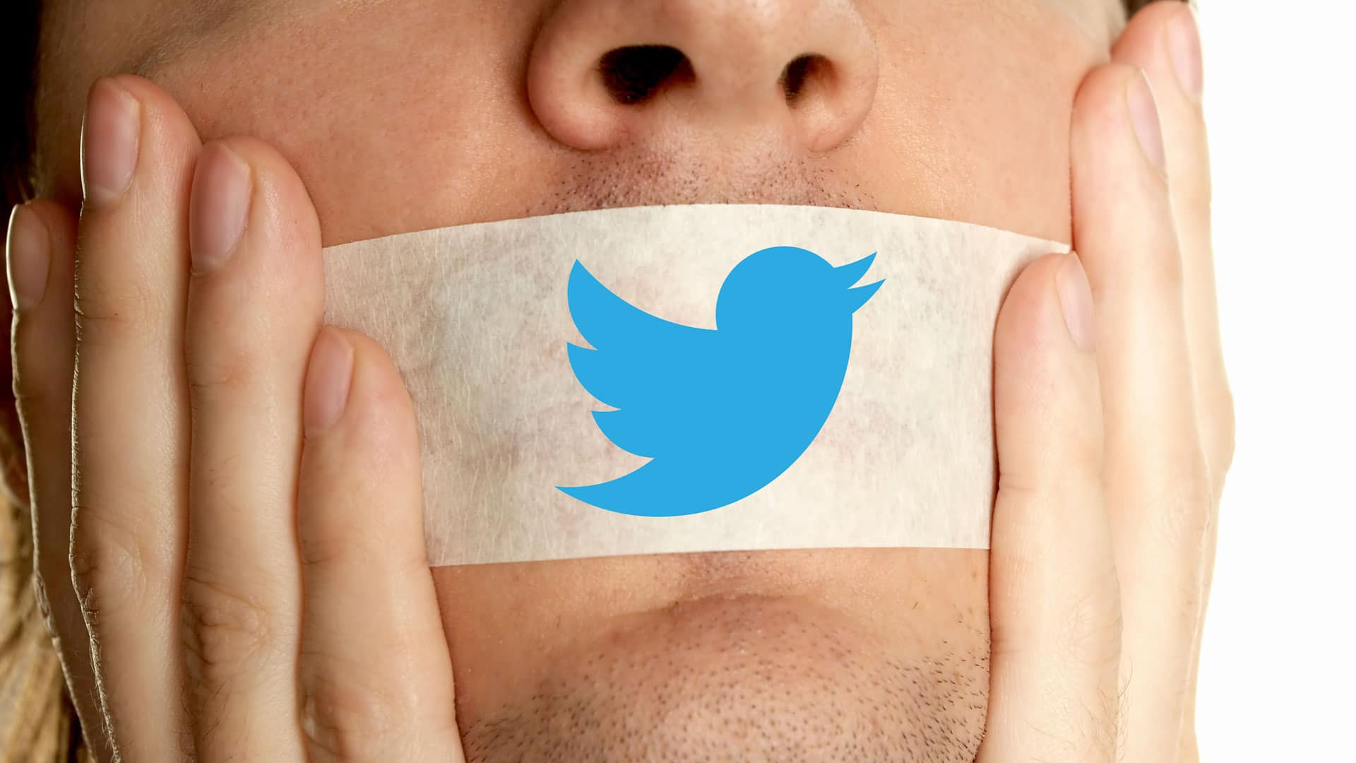 twitter bans porn top tags